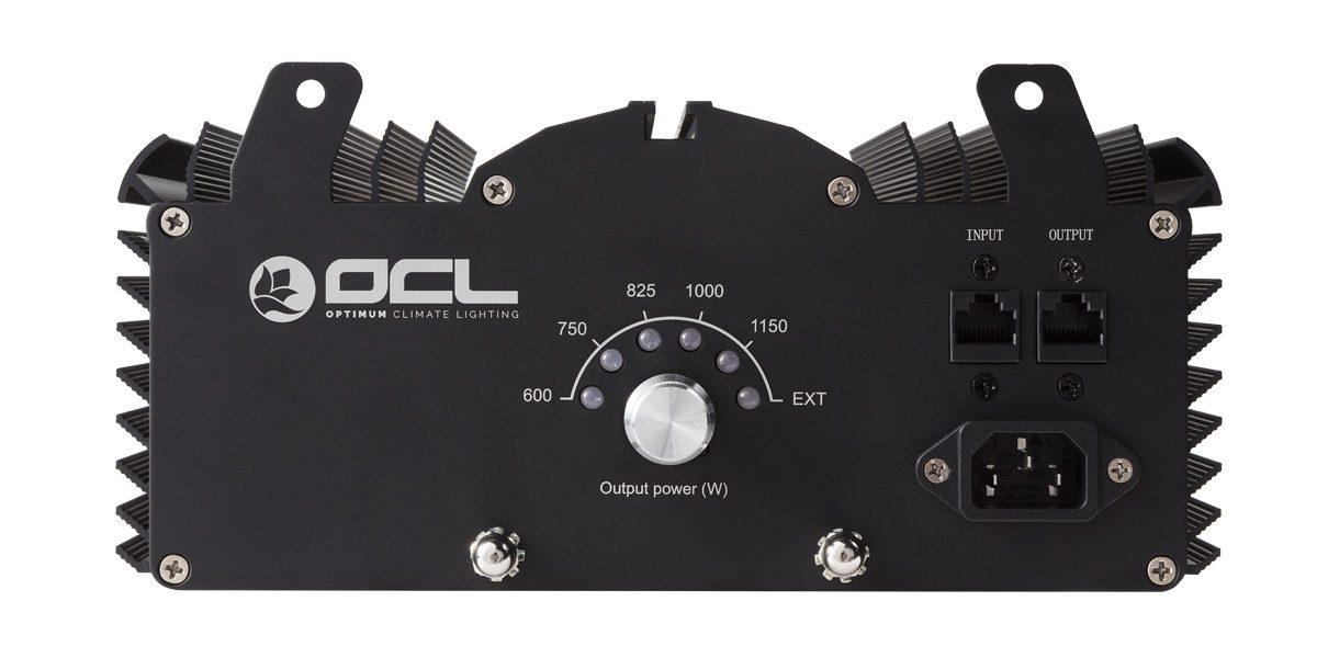 Beste OCL XXL Series – EL 1000W DE, Birne+ Linkcable incl.   DER HOLLAENDER PL-01